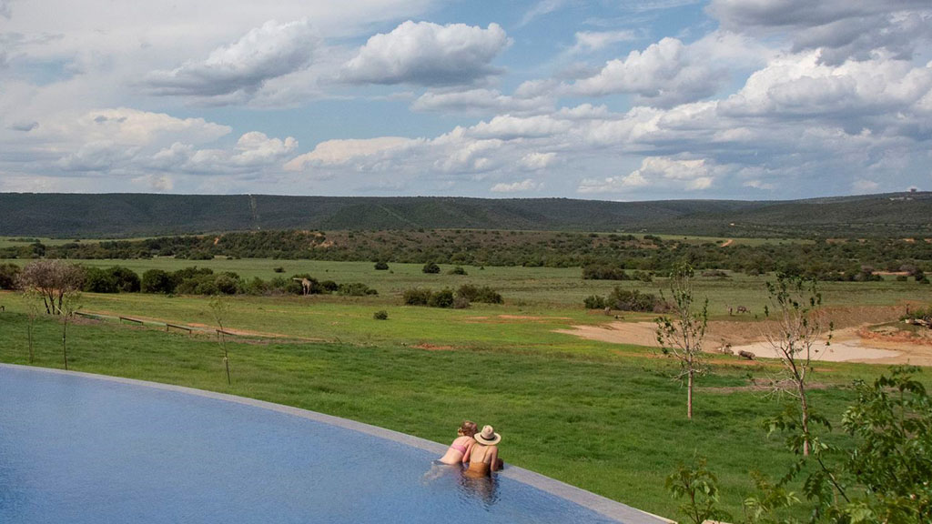 Guests swimming at a Shamwari pool overlooking the reserve